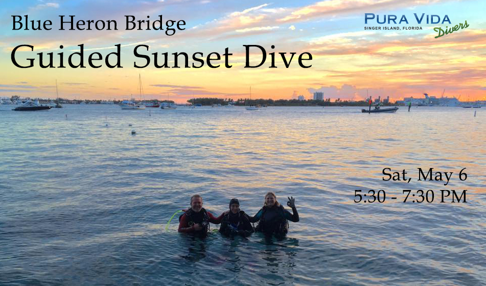 MAY 6: SUNSET DIVE AT BLUE HERON BRIDGE