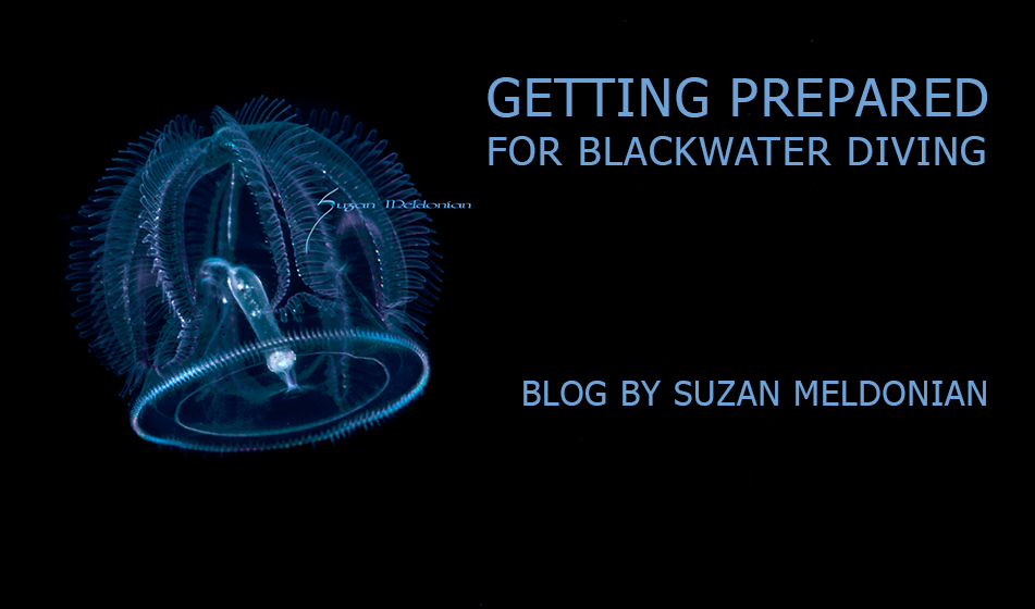 BLACKWATER DIVING: GETTING PREPARED
