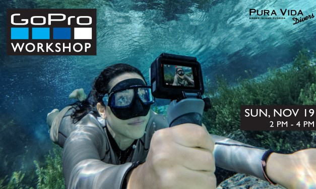 NOV 19: GOPRO WORKSHOP