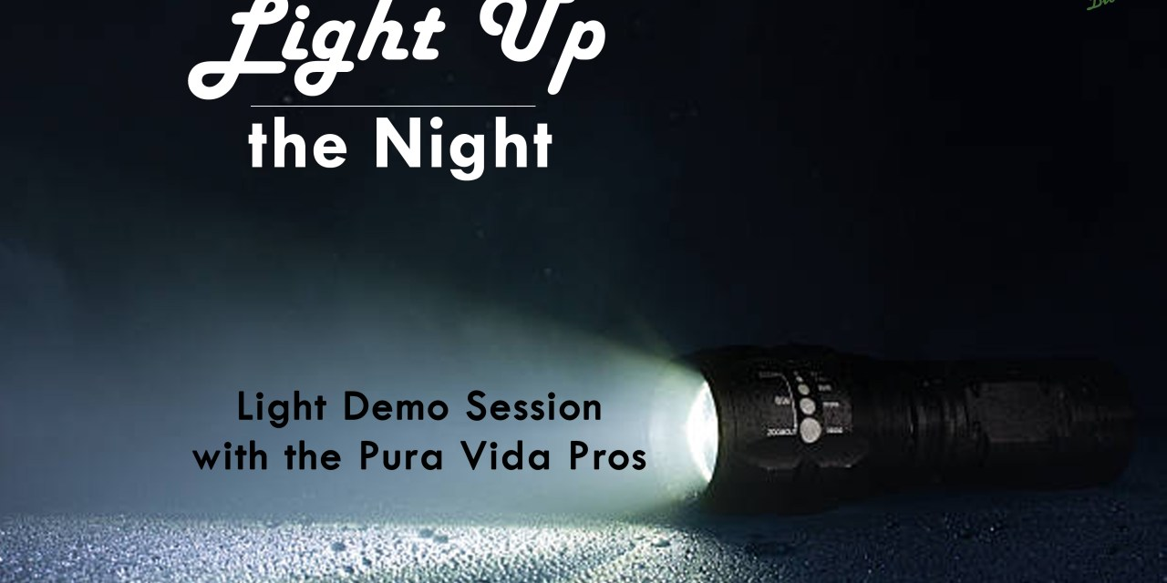 NOV 12: LIGHT DEMO AND Q&A