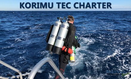 KORIMU TECHNICAL DIVE CHARTER
