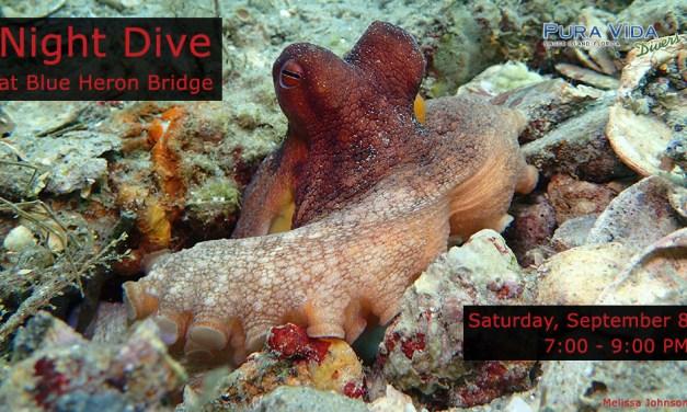 SEPT 8: GUIDED NIGHT DIVE AT BLUE HERON BRIDGE