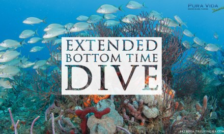 JAN 13: EXTENDED BOTTOM TIME DIVE