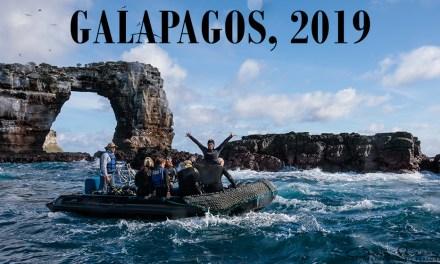 GALAPAGOS 2019!