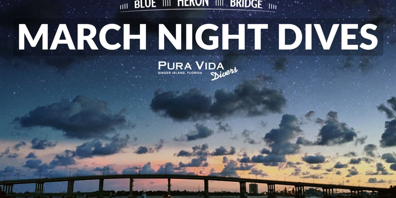 MARCH GUIDED NIGHT DIVES AT BLUE HERON BRIDGE