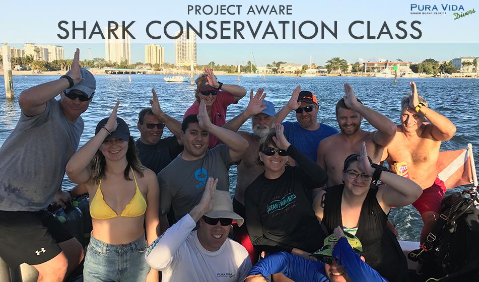 SHARK CONSERVATION CLASS