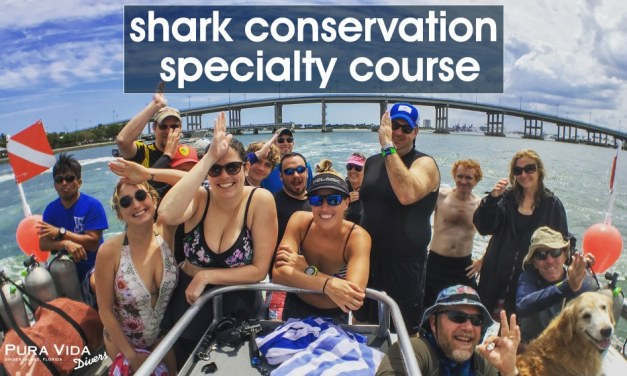 SHARK CONSERVATION SPECIALTY DIVER CLASS