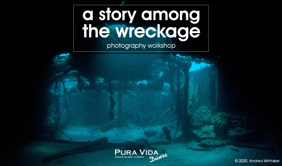 A STORY AMONG THE WRECKAGE: PHOTO WORKSHOP