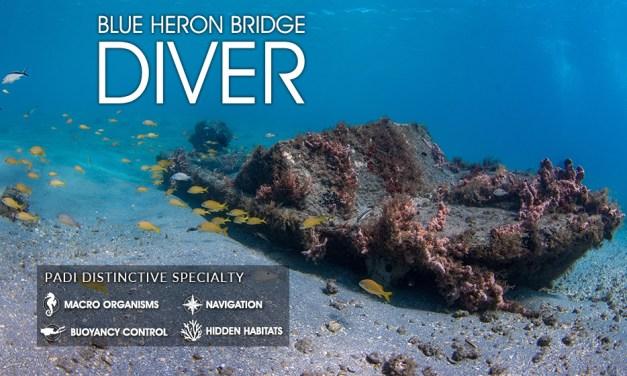 BLUE HERON BRIDGE DIVER SPECIALTY CLASS