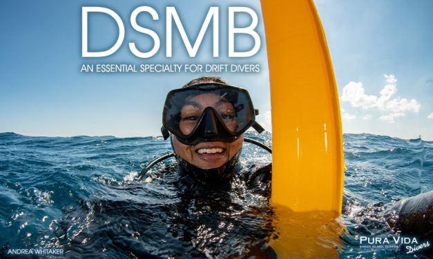 DSMB DIVER SPECIALTY: DIVERS BELOW