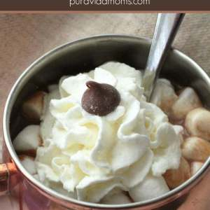 Easy Slow Cooker Hot Chocolate Recipe