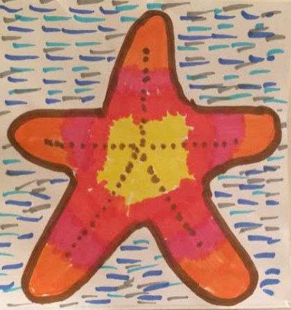 PYA 2017 - starfish_Bov school