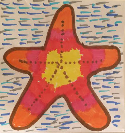 PYA 2017 - starfish_Bov school