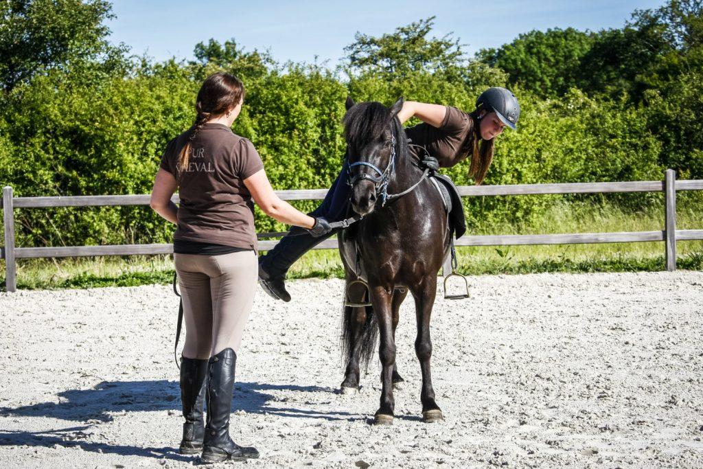 Débourrage d'un cheval islandais chez Pur Cheval