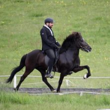 thorhallsson_elisa-pur-cheval