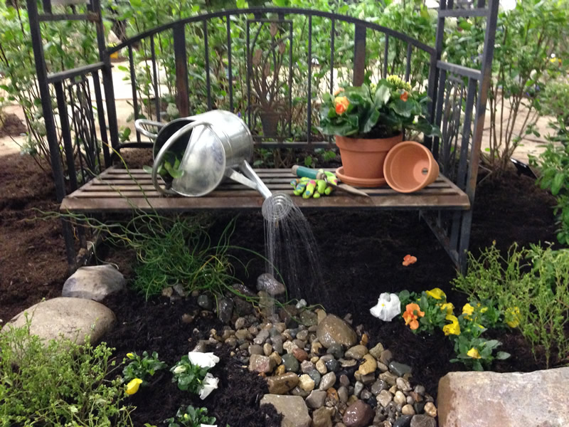 spring garden shows cure winter blues
