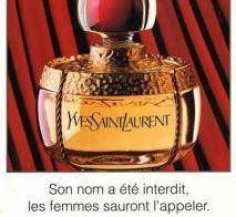 Yves Saint Laurent : une vie