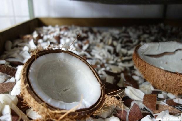 Coco tahiti arome moorea