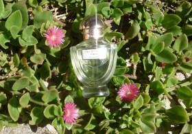[Concours] Parfum Fragonard : son nouveau musée, sa fleur d'oranger intense, ses ateliers de parfums