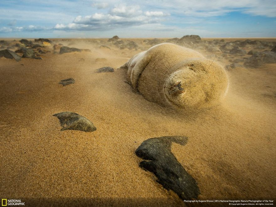 national-geographic-20