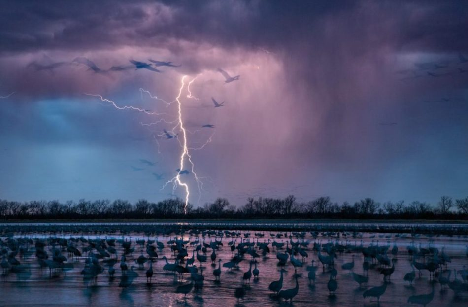 national-geographic-1