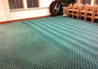carpet cleaning company houston tx