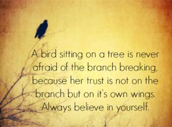 a bird quote