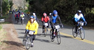 Cyclists attacking the hills in the FEB '13 ChillyHilly -- I am not the only one feeling pain on these hills !!