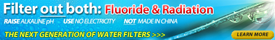 All-In-One Water Filtration System