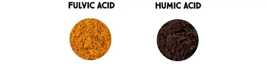 fulvic acid and humic acid