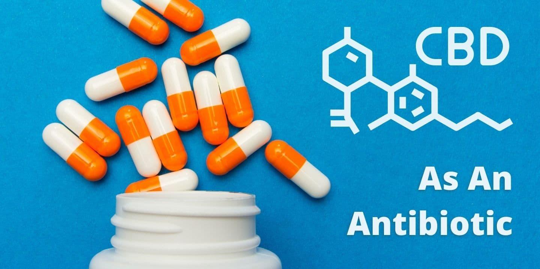 cbd oil as an antibiotic