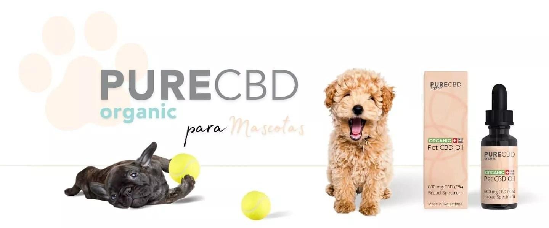 aceite de cbd para perros de Pure Organic CBD