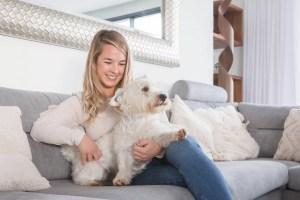 Aceite de CBD para perros