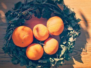 Cretan Oranges