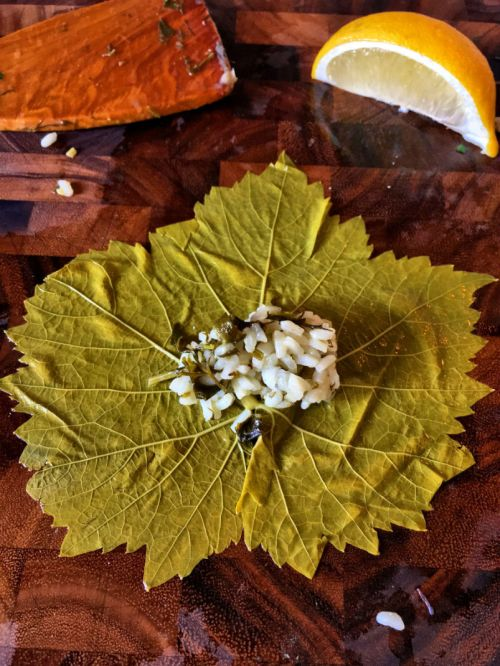 Greek stuffed grape leaves