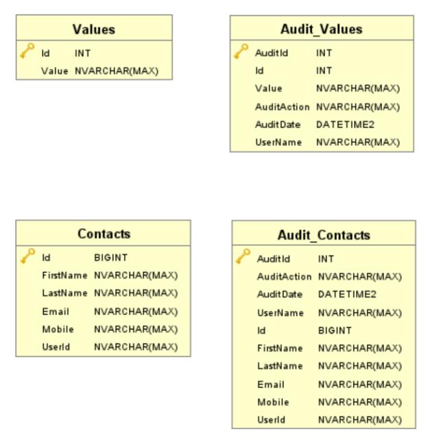 The audit table schemas