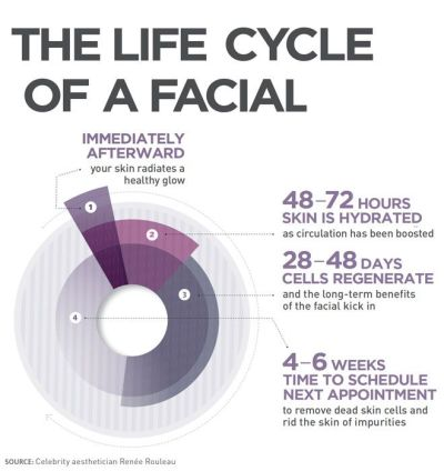 facial-life-cycle