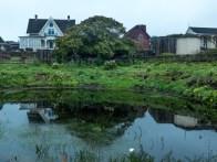 Mc Callum house and Kelly pond