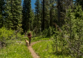 Tahoe Rim Trail Ward Creek