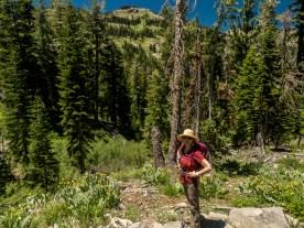 Tahoe Rim Trail McCloud Falls