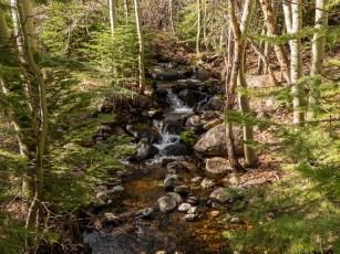 Spring feeding into Lower Twin Lake