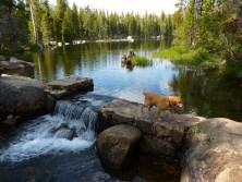 Wrights Lake 2011
