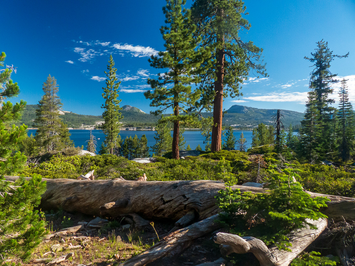 Loon Lake Campout – July 2020