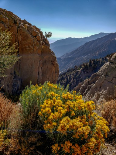 Road to Golden Trout Wilderness