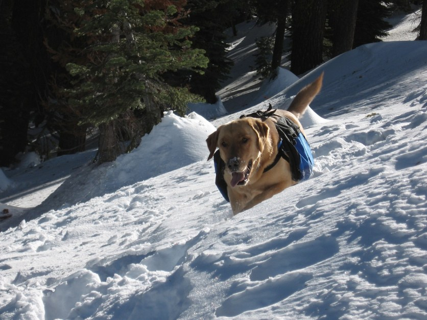 Ben loved to go on snow shoe trips