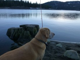 Fishing buddy