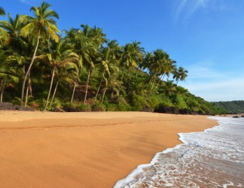 Natural Splendours in Goa