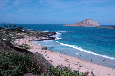 Escape Beaches Oahu