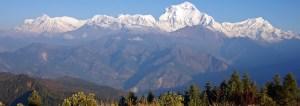 Trek Himalayas