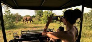 Victoria falls island lodge game drive activity